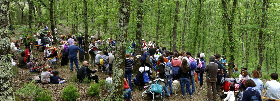 eventi_bosco_tenuta_di_paganico