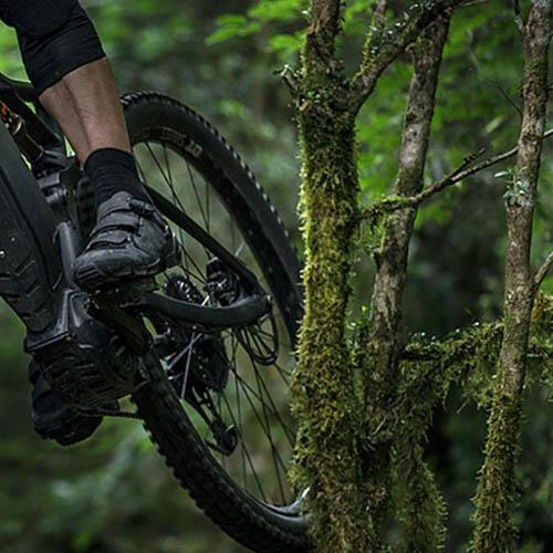 Long trekking e Mountain E- Biking con guida alla scoperta della Tenuta